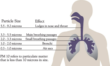 Air Borne Particulate
