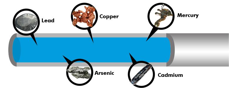 Effects Of Mercury In Drinking Water